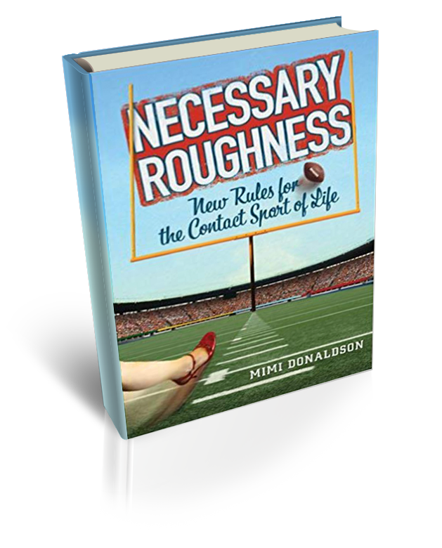 Necessary-Roughness-Book-3D
